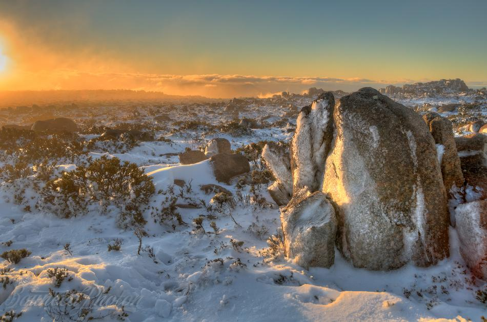 Frozen Plateau of Mount Wellington