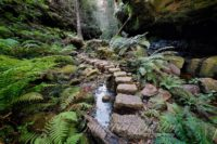 Grand Canyon Stepping Stones, Blue Mountains, Australia
