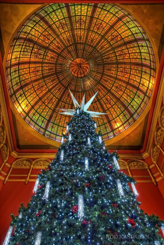 QVB Christmas Tree 2010