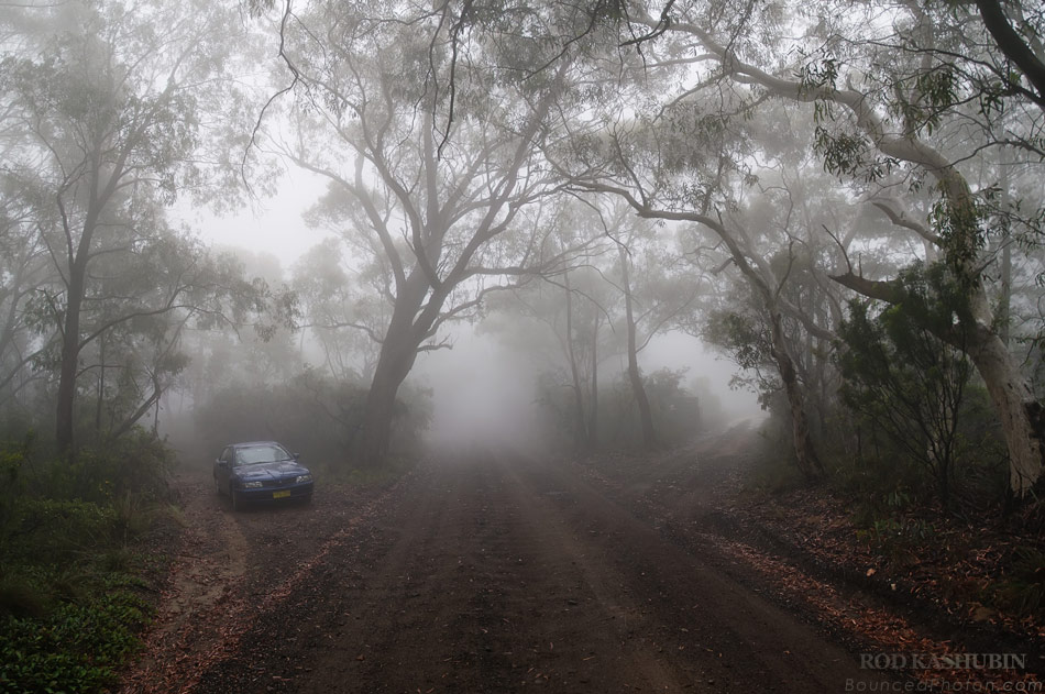 Foggy Road to Anvil Rock Lookout